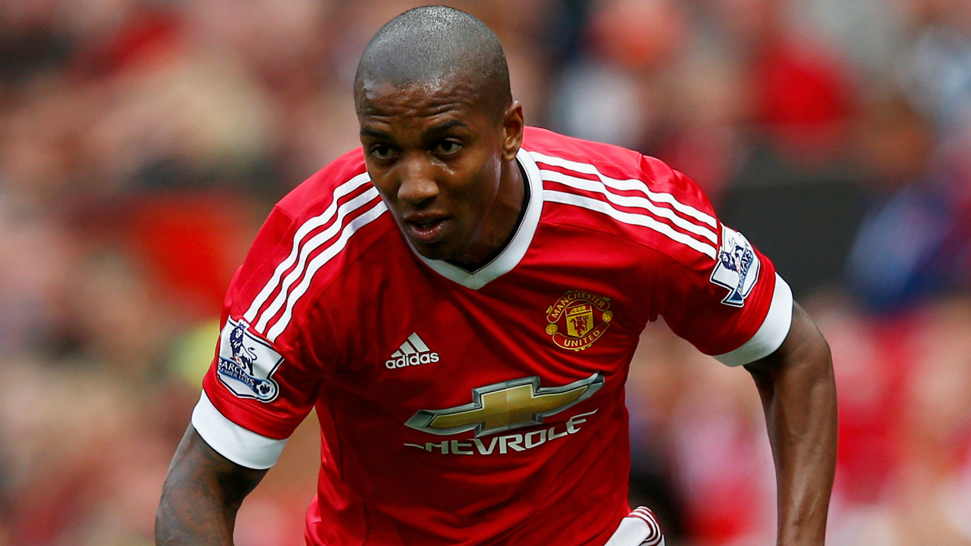 ashley-young-cropped_a4r3y23arxmk1i3g8ajgtm2qyjpgt615092240