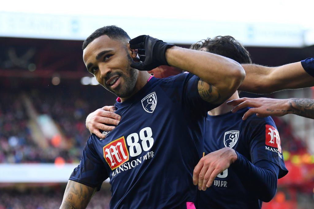 Callum Wilson is one of the top forwards for the Cherries